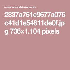 2837a761e9677a076c41d1e54811de0f.jpg 736×1.104 pixels