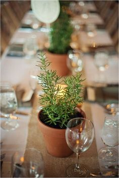 rustic potted plants wedding table decor / http://www.himisspuff.com/potted-plants-wedding-decor-ideas/10/