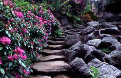 Cragside House, Garden and Estate -- Northumberland