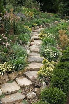 backyard landscaping Idea. Love the rustic look of the path