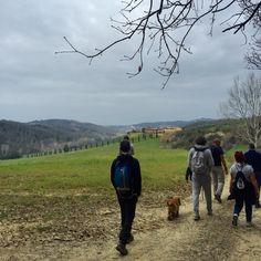 Via Francigena #castelfiorentino #viafrancigena #francigena #trekking #toscana #tuscany