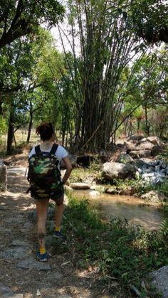 Things to do in #Dharamshala, #india  _____________ #hiking #greatoutdoors #adventure