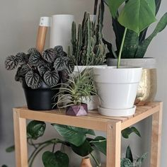 Hey hey, Brittany here from by Brittany Goldwyn. I recently shared a quick epoxy resin project I did using some new mica dye powders—a set of ocean-inspired coa… Large Planters, Diy Planters, Bubble Painting, Succulent Planter Diy, Terracotta Plant Pots, Diy Plant Stand, Resin Crafts, Diy Crafts, Resin Table