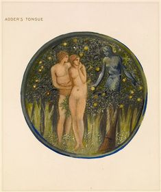 The Flower Book - Adder's Tongue By Sir Edward Burne-Jones 1905 Circular image. The temptation of Adam and Eve. A blue skinned woman, seated in a tree, holds out a fruit towards Adam and Eve.