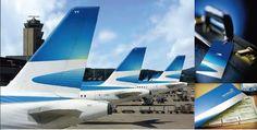 Aerolineas Argentinas: Aerolíneas Argentinas - La privatización 1/5