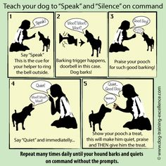 Stop barking dog: one counter-intuitive way to stop excessive dog barking is to teach your hound to speak and quiet on command. It works like a charm! And it is always a great trick to show off.
