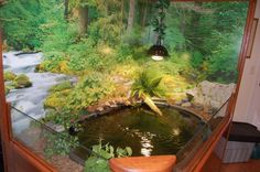 Indoor turtle pond. Love this, it would be amazing for my Tiki if there was more land area