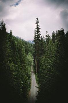 explore-everywhere