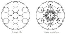 From the Flower of Life, by removing the right lines again, the Fruit of Life can arise. When straight lines (male energy) are added to the Fruit of Life from the centers of the circles, Metatron's Cube is created. Metatron's Cube contains the blueprints of all Platonic solids. Learn more about the Flower of Life in our Blog! #fruitoflife #metatroncube #metatronscube #floweroflife #sacredgeometry Egg Of Life, Fibonacci Golden Ratio, Divine Proportion, Platonic Solid, Everything Is Connected, Pyramids Of Giza, Straight Lines, Flower Of Life, Sacred Geometry