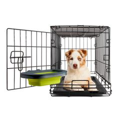 Dexas® Online Store - Collapsible Kennel Bowl, $12.99 (http://store.dexas.com/collapsible-kennel-bowl/)