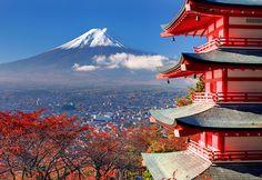 富士山   Photek (tcd024)