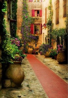 Ancient Courtyard, Provence, France #container_garden