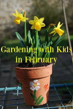Garden jobs and Gardening Fun with Kids in February
