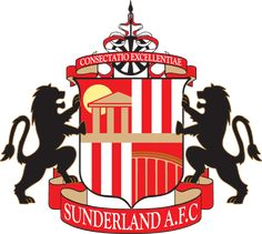Sunderland Association Football Club is an English professional football club…