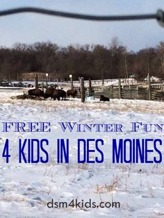 FREE winter fun for kids in Des Moines, IA. - dsm4kids.com