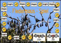 Fledermaus-Spiel mit Fragen- und Aktionskarten