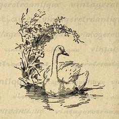 Printable Duck Graphic Image Illustration by VintageRetroAntique