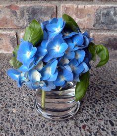 blue hydrangea with fresh basil