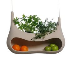 I like the idea of an indoor herb garden that also holds produce. My kitchen just got a little less cluttered