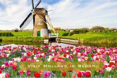 """""""2015 Selfie Bucket List"""" Visit Holland in Bloom"""