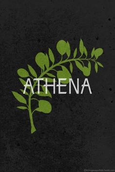 The Twelve Olympians: Athena by Hydrogene Portfolio