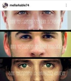 Peeta, gale and finnick! Men from the hunger games: catching fire Hunger Games Memes, The Hunger Games, Hunger Games Fandom, Hunger Games Catching Fire, Hunger Games Trilogy, Katniss Everdeen, Katniss And Peeta, Fangirl, Tribute Von Panem