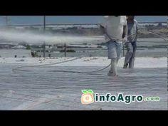 Blanqueo de invernaderos (método de sombreo) - YouTube