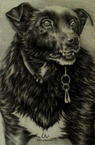 Pepper, 5″ x 7″ Graphite Pencil in Watercolor Paper, by Artistry by Lisa Marie SOLD