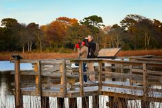 Bird watching in the fall. Nature, autumn, foliage, Cape May Point, Ocean City, Jersey Cape, Cape May County, New Jersey