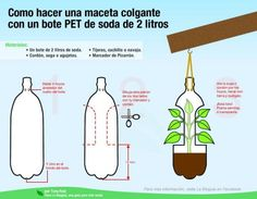 Maceta colgante con botella reciclada