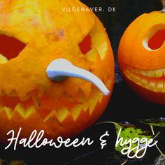 Halloween græskar til pynt - og lækker mad. Se opskrift på suppe og kernesunde snack! Pumpkin Carving, Wildlife, Gardens, Snacks, Appetizers, Outdoor Gardens, Pumpkin Carvings, Treats, Garden