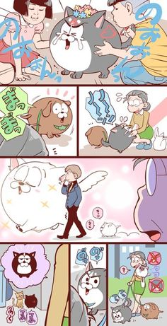 """みかど@10月西4a28a : """"松代と犬松 https://t.co/N2P69lS9oY"""""""