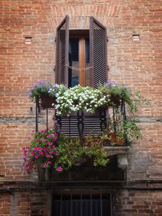 This is a photo from Siena, one of the Tuscan hill towns. A small but pretty balcony in one of the typical small streets of Siena.