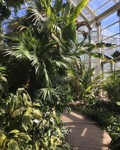 Glorious day to visit @brooklynbotanic! One of the most beautiful and well kept gardens I've visited!