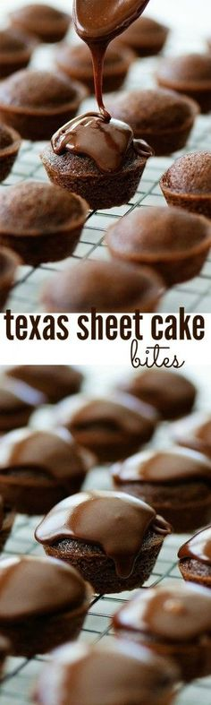 Texas Sheet Cakes Bites Recipe via Life in the Lofthouse - The BEST Bite Size Dessert Recipes - Mini, Individual, Yummy Treats, Perfectly Pretty for Your Baby and Bridal Showers, Birthday Party Desser (Individual Chocolate Desserts) Mini Desserts, Holiday Desserts, Chocolate Desserts, Just Desserts, Chocolate Chips, Individual Desserts, Mini Bunt Cake Recipes, Eggless Desserts, Chocolate Party