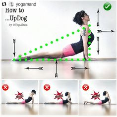 "3,101 Likes, 31 Comments - Yoga Asanas ॐ Learn & Improve (@yogaalignment) on Instagram: "" #UrdhvaMukhaSvanasana ↔ #UpwardFacingDog Pose on @yogaalignment . . #healthypractice with…"" #MorningYoga"