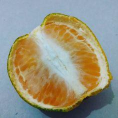 Sarapan pagi dengan jeruk?