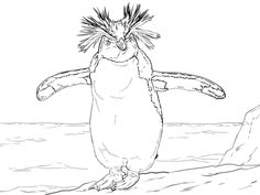 Free Printable Penguin Coloring Pages For Kids   Free printable ...