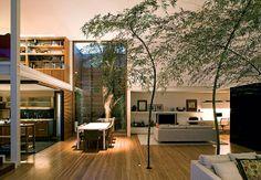 Árvores dentro de casa?