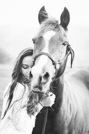 Image result for girl and  horse drawing