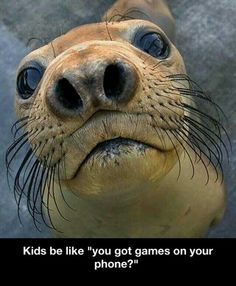 Kids!