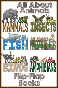 Do you teach about Animal Classifications?  If so, this is the RESOURCE for you!  These flip-flap books are a wonderful way for your students to practice their research skills and expository writing!  They are FUN and Interactive as well!$
