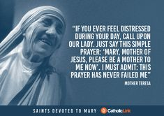 Our Saints Our Heroes devotion to Mary