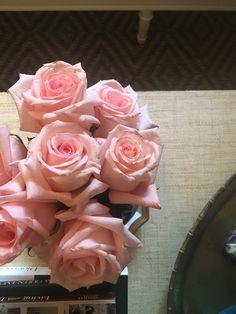 Pink summer roses