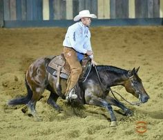 Special Nu Baby and Matt Gaines. Cowgirl Pictures, Horse Pictures, All The Pretty Horses, Beautiful Horses, American Quarter Horse, Quarter Horses, Cutting Horses, Reining Horses, Western Riding
