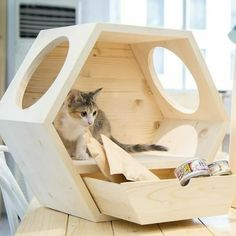 Pet Beds, Dog Bed, Dog Crate Furniture, Cat House Diy, Cat Stands, Cat Room, Cat Wall, Pet Home, Dog Houses