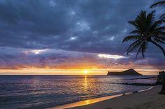 #Rabbit #Island #Sunrise- #Oahu, #Hawaii #Manana Island. Starting at $27. #nature #travel #palm #tree #blue #orange #beach #nikon #photography #picsart