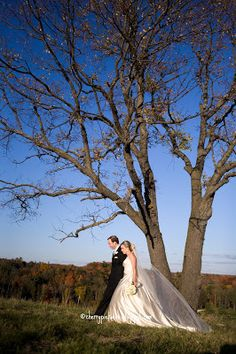 Fall wedding - Hope there is more leaves on the tree though!