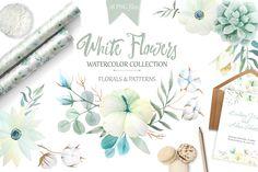 Watercolor White Flowers Set by LarysaZabrotskaya on @creativemarket