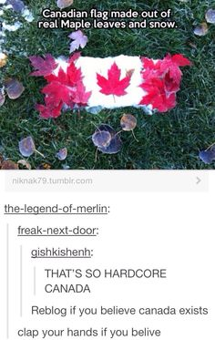...well excuse me I happen to exist and be canadian